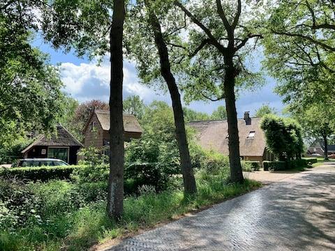 Sleeping in the Hooiberg Dwingeloo