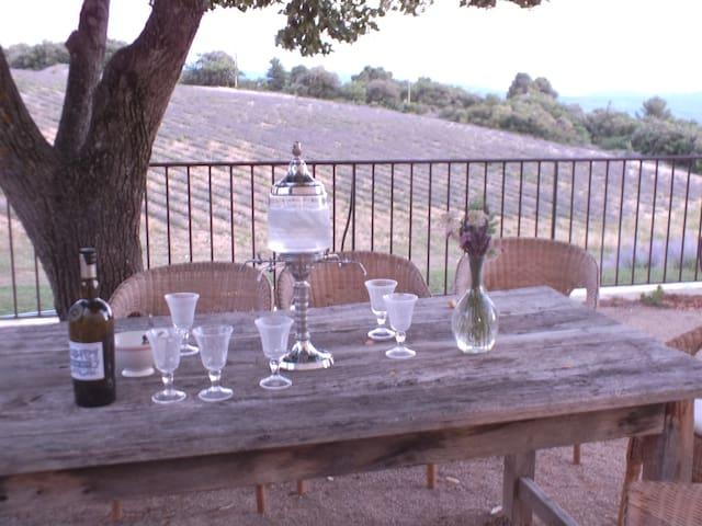 La terrasse sous l'ombre du tilleul accueille une grande table pour les repas en extérieur.