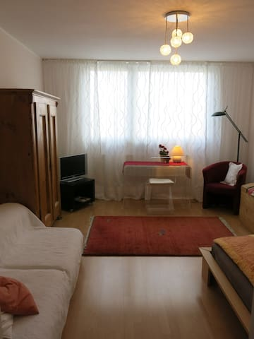 Downtown cosy room -own bathroom, - Munich - Apartment