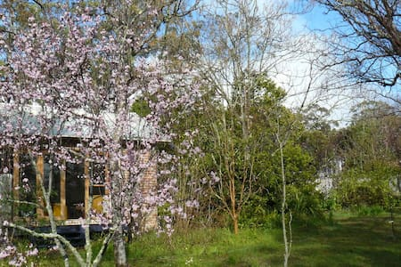 Geebung Cottage - Mittagong - Дом
