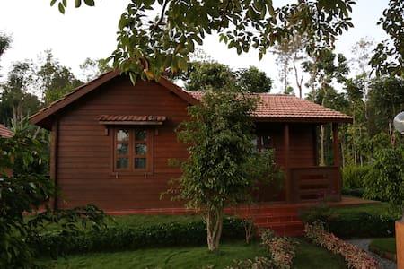 George's Arabica - Bavali - Maison