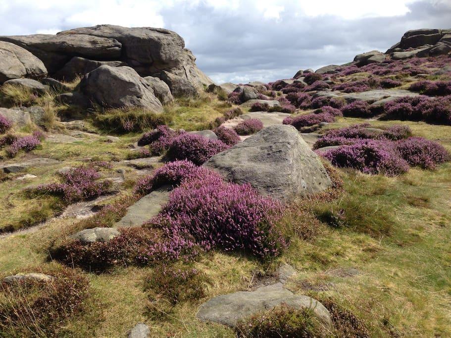 I hour away - beautiful Yorkshire Moors