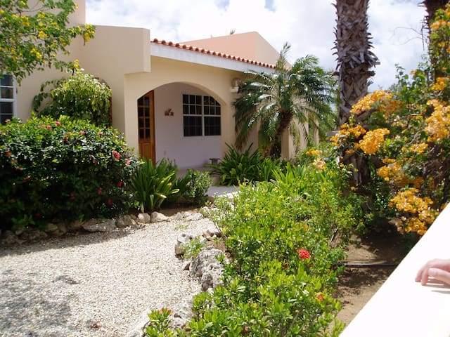 Bunita Luga 6 persoons bungalow - Kralendijk - House