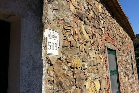 Casa Grassinelle - Livorno