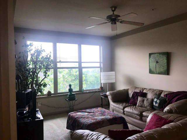 4/20 Friendly 1bed 1bath in downtown atl!