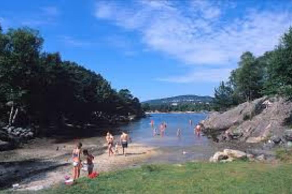 Tømmervågen local Beach/bath