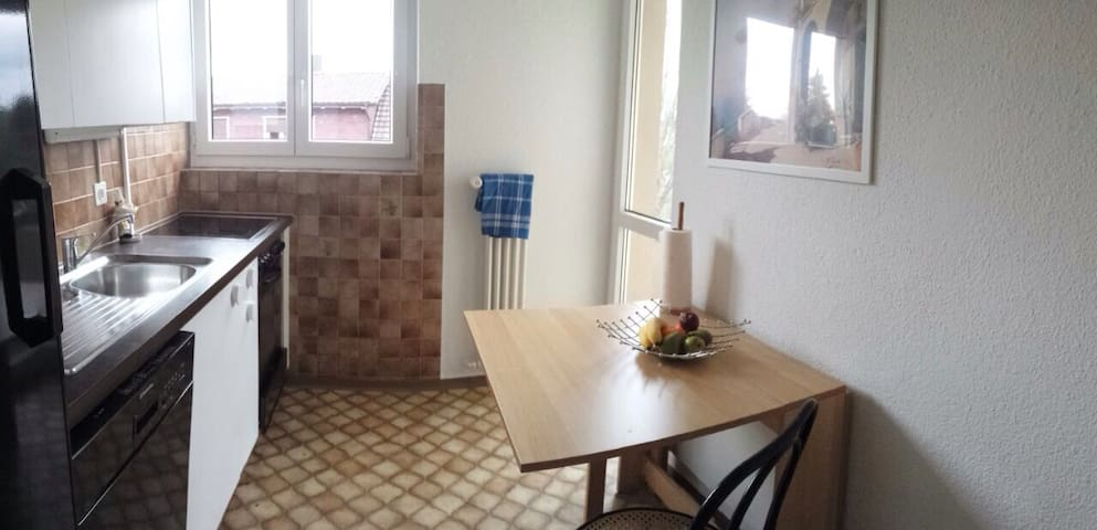 Enjoy wintertime in cosy apartment - Teufen - อพาร์ทเมนท์