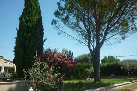 Bastide des mereuilles F. Mistral - Orange - Bed & Breakfast