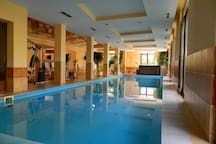 Wellness úszómedence