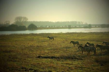 Natuur en stad nergens zo dichtbij  - Ooij