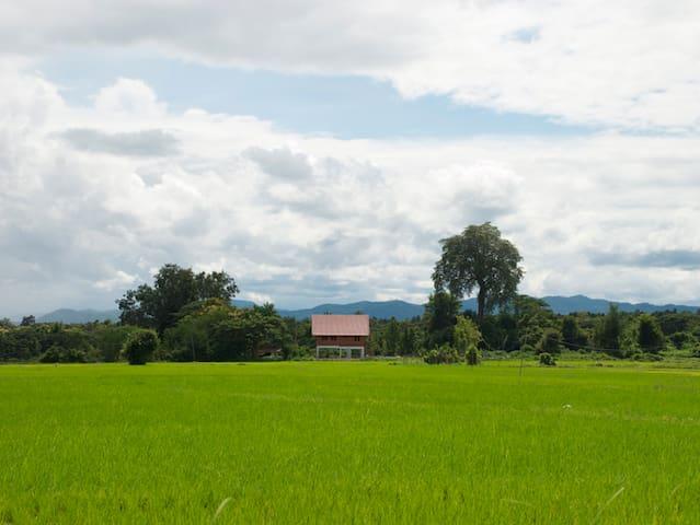 Thais-Haus inmitten von Reisfeldern - Tambon Hang Chat