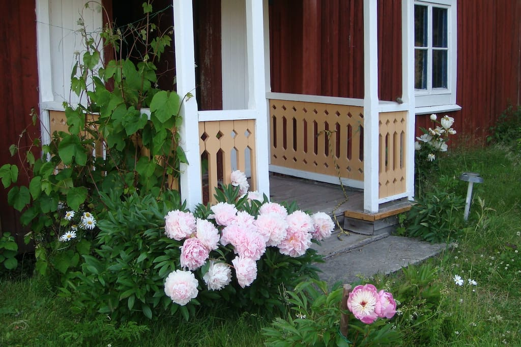 A beautiful verandah/porch