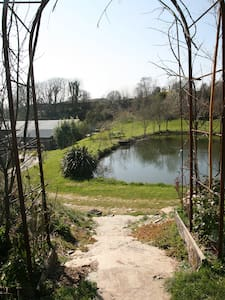 Summerhouse Cabin overlooking ponds - East Allington