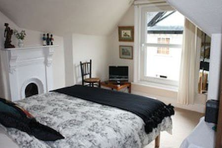Ensuite double with fab wet room - Ashburton - Bed & Breakfast