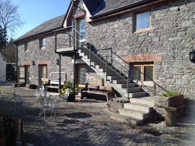 Luxury Apt on Organic Apple Farm. - Kilkenny - Apartment