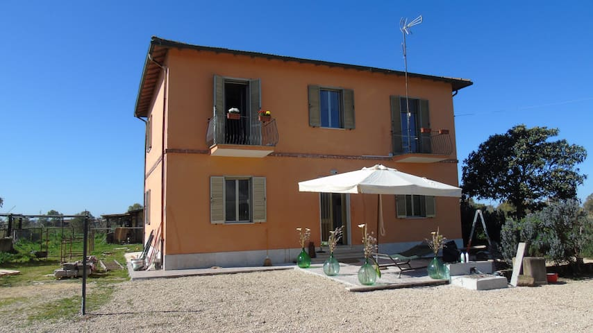 CASAL BIOSE' BED AND BREAKFAST - FIUMICINO  - Bed & Breakfast
