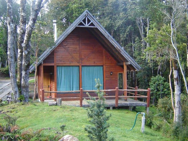 Huillinco - Mirando al lago - Cabaña Epu (2)