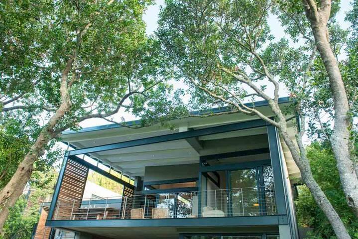 Patio in the shady tree canopy (rich birdlife!)
