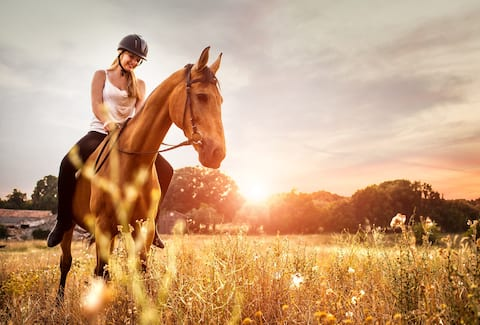 Evermore Retreat, Working Horse Farm, Sleeps 10