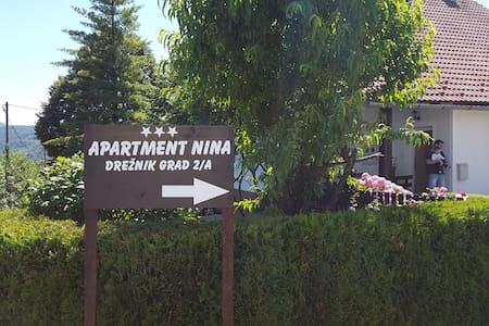 "APARTMENT ""NINA"" - Drežnik Grad"