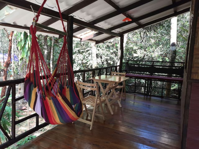 Tree house with big terrace