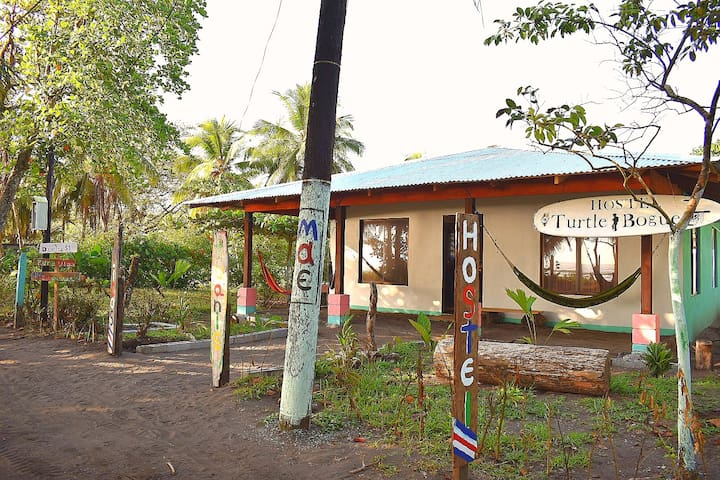 Hostel turtle bogue. Casa de playa