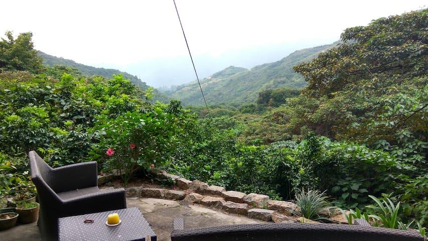 Mui Wo Jungle House with Cat - Hong Kong - Dům