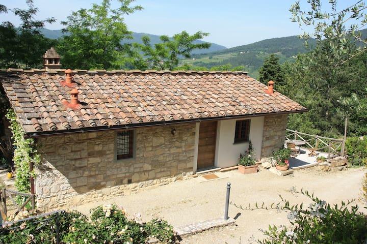 Chianti Rufina vineyard retreat for 2 - Pelago