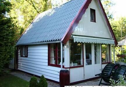 Te huur: rustige B&B bij Zuidlaren in het bos - Zuidlaren - Cabin