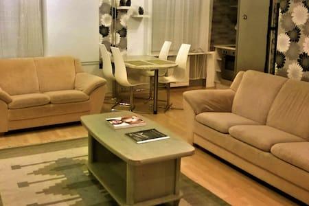 Nice Central 61m Apartment - 塔林 - 公寓