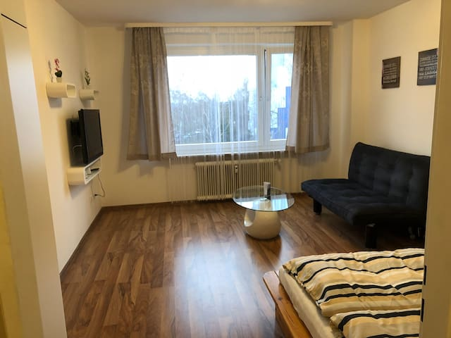 Apartment+Wifi near center Erlangen 3
