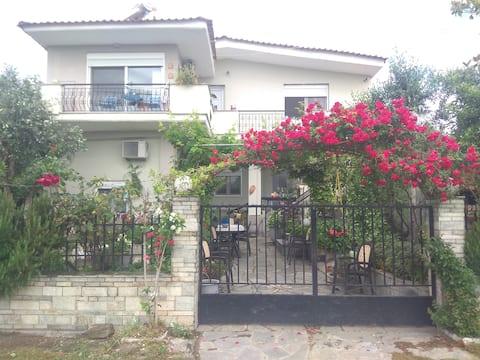 Sofia 's Cottage