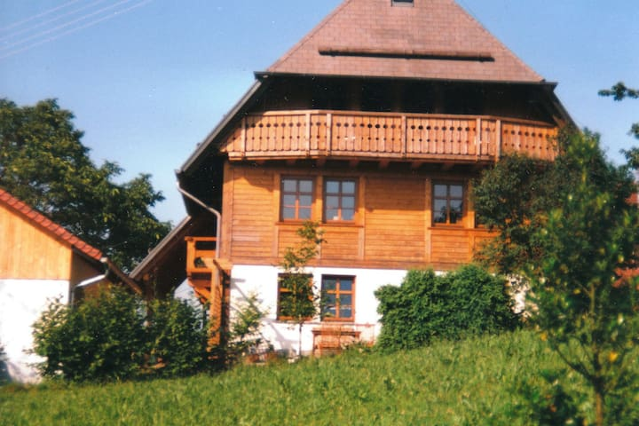Spacious Apartment near Forest in Oberprechtal