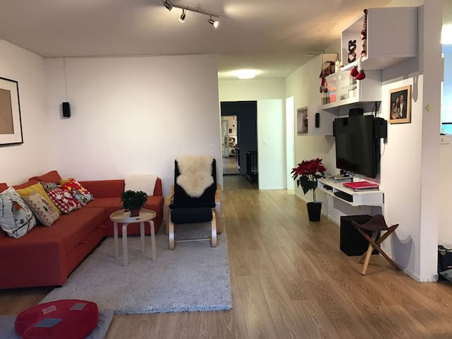 Comfortable yet cheap 2 bedroom ap. in Zurich City - Zürich - Apartment
