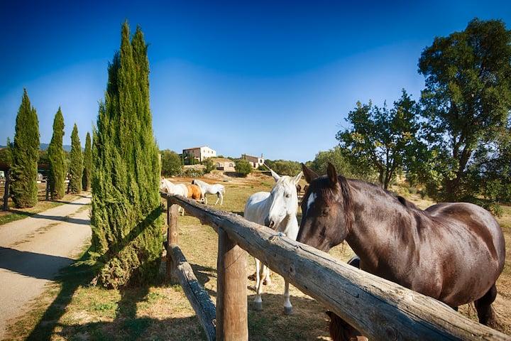 3 Bedrooms. Luxury Farmhouse. Gerona, Costa Brava.