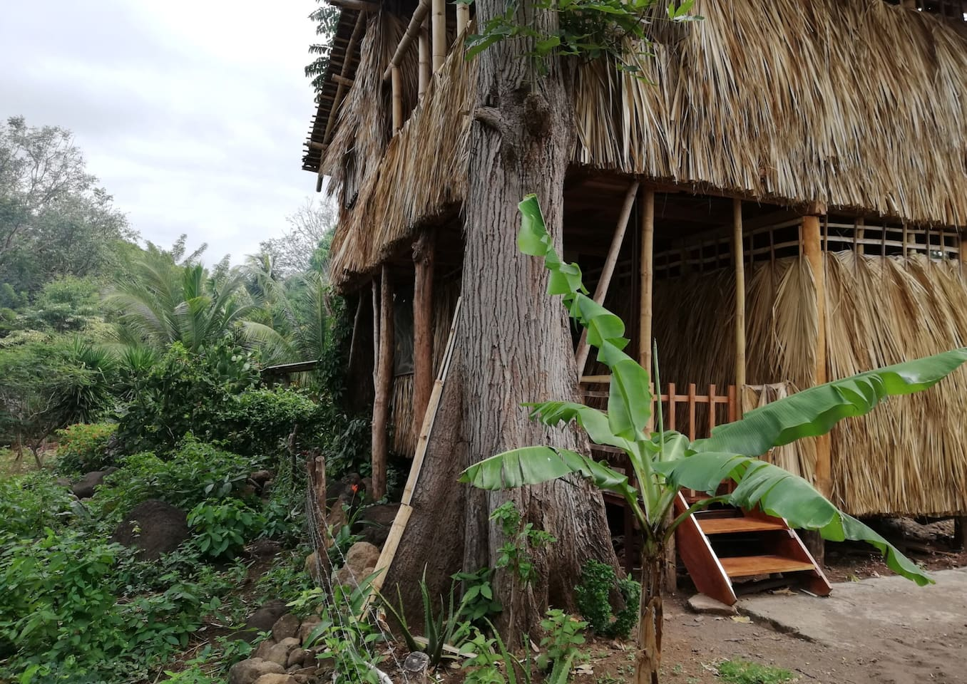 Enjoy the local Nicaraguan neighborhood by sleeping at unique Bamboo cabin. El Bamboo located on Balgue, Ometepe island.