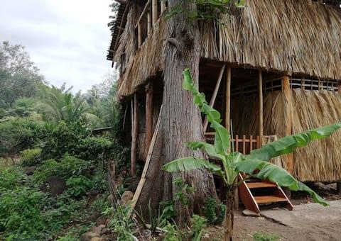 El Bamboo cabin