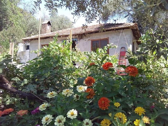 Meditatif bir köy evi