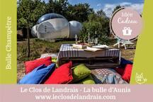 Coffret cadeau/consulter le site internet : Plateau Champêtre/vin + Nuit + petit déjeuner gourmand