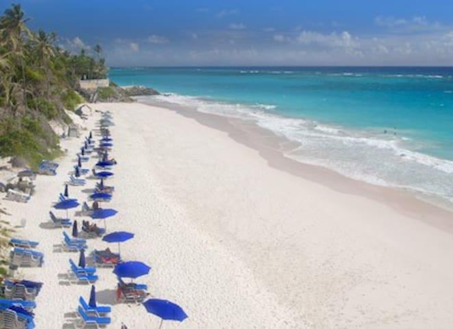 Crane Beach 300 meters away