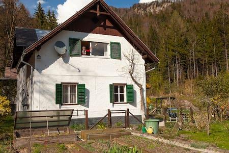 Naturidylle nahe der Kaiserstadt Bad Ischl
