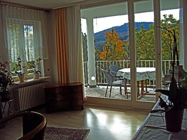 2 1/2 Zi. Nichtraucherwohnung 60qm - Baden-Baden - Apartamento