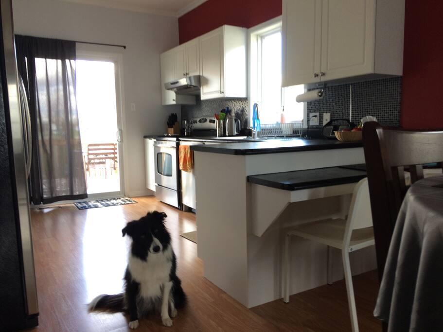 Kitchen and Tessa :)