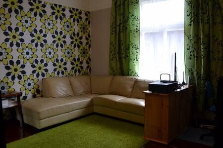 Quiet apartment near Otepää