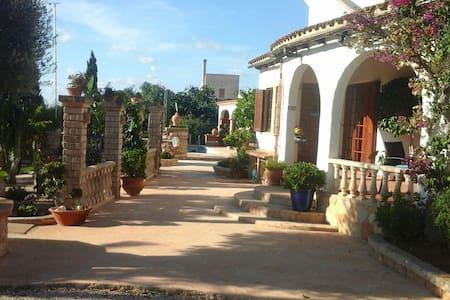 Gemütliche Studios nahe Meer - cala llombards - Haus
