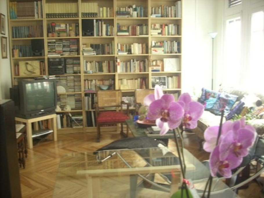 Otra vista del cuarto de estar