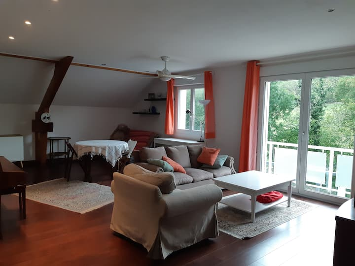 Charmant appartement entre Doubs et Loue