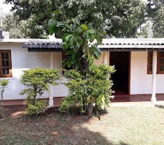 The Lodge Digana
