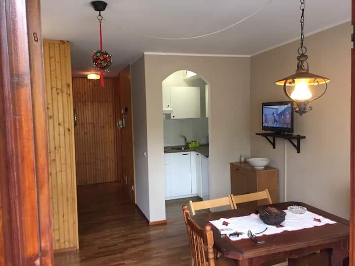 Wi-FI Studio Apartment in Cervinia