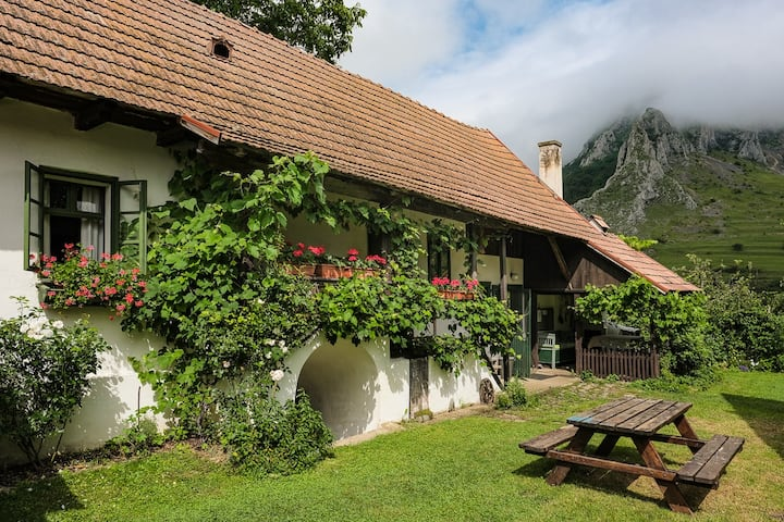 Cozy country house in Torockó